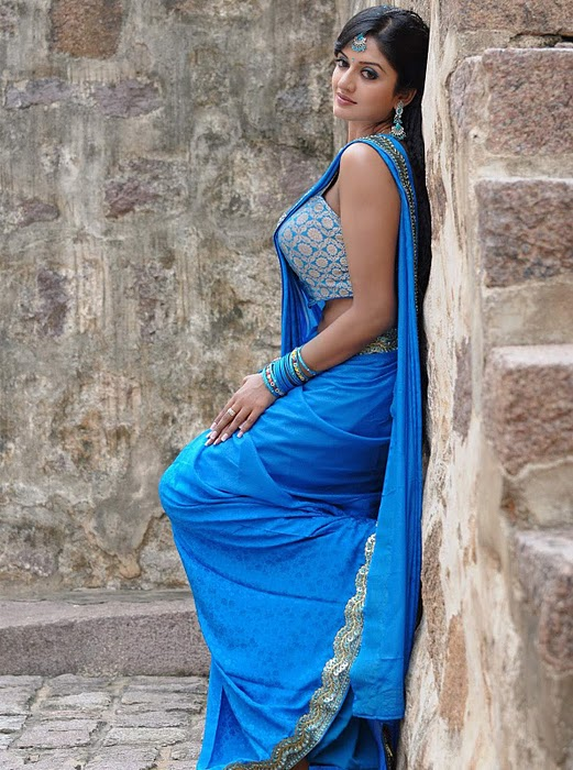 Vimala Raman  - Beautiful Vimala Raman in Sexy blue Saree