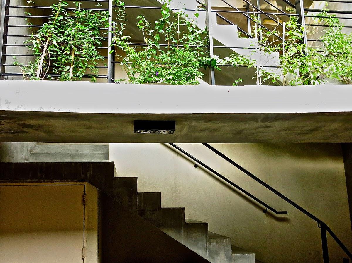 taller Pato Da Cunha