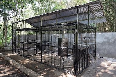 Cage repas