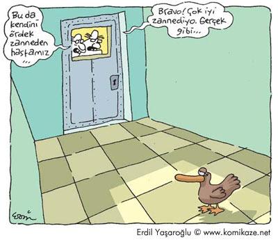 Ördek Karikatür