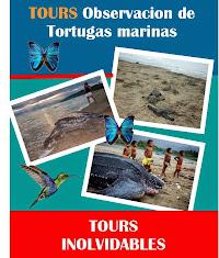 TOURS ABIERTOS