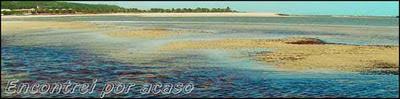 Praias da Barra do Cunhaú