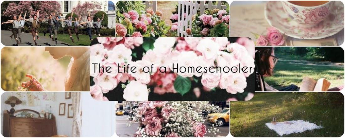 The Life of a Homeschooler