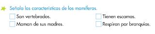 http://primerodecarlos.com/SEGUNDO_PRIMARIA/noviembre/Unidad_4/actividades/cono_unidad4/caracteristicas_mamiferos.swf