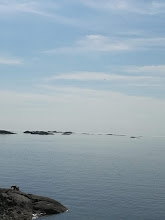 Himmel & hav i Lofoten