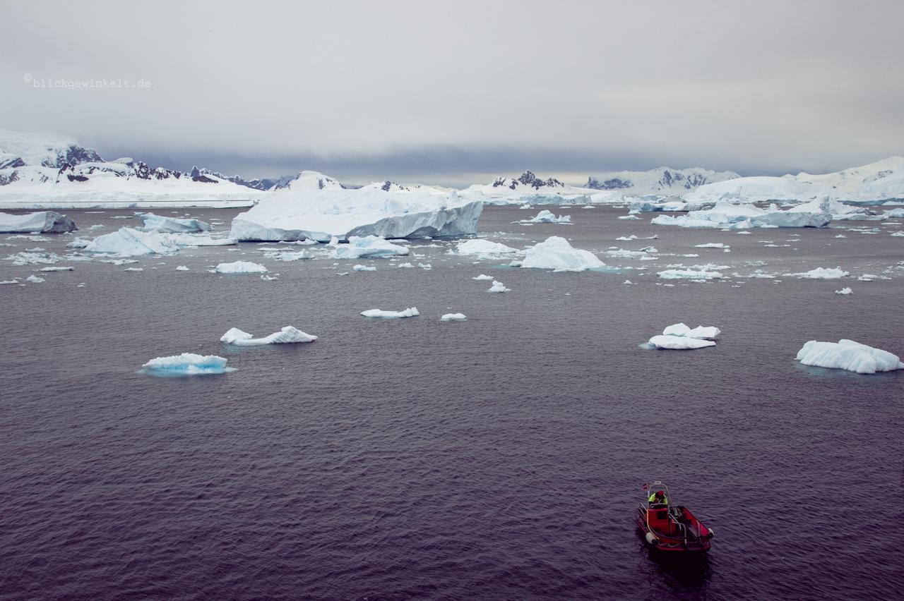 Zodiac in der Antarktis