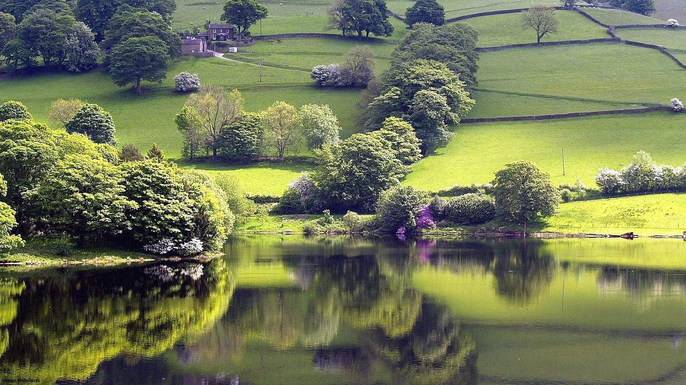 tranquil lake green meadow trees nature peace of mind wallpapers