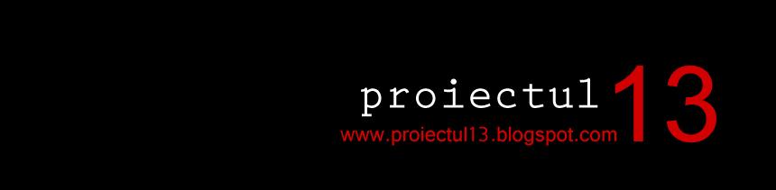 proiectul13