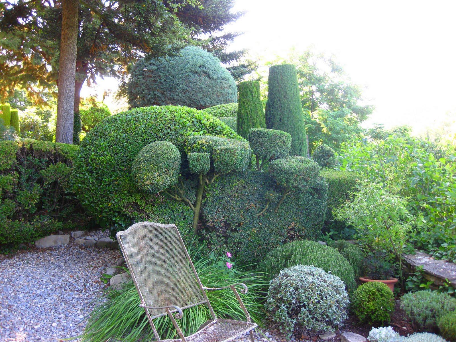 D a de internet paisajismo y jardiner a espacios vivos for Jardineria y paisajismo