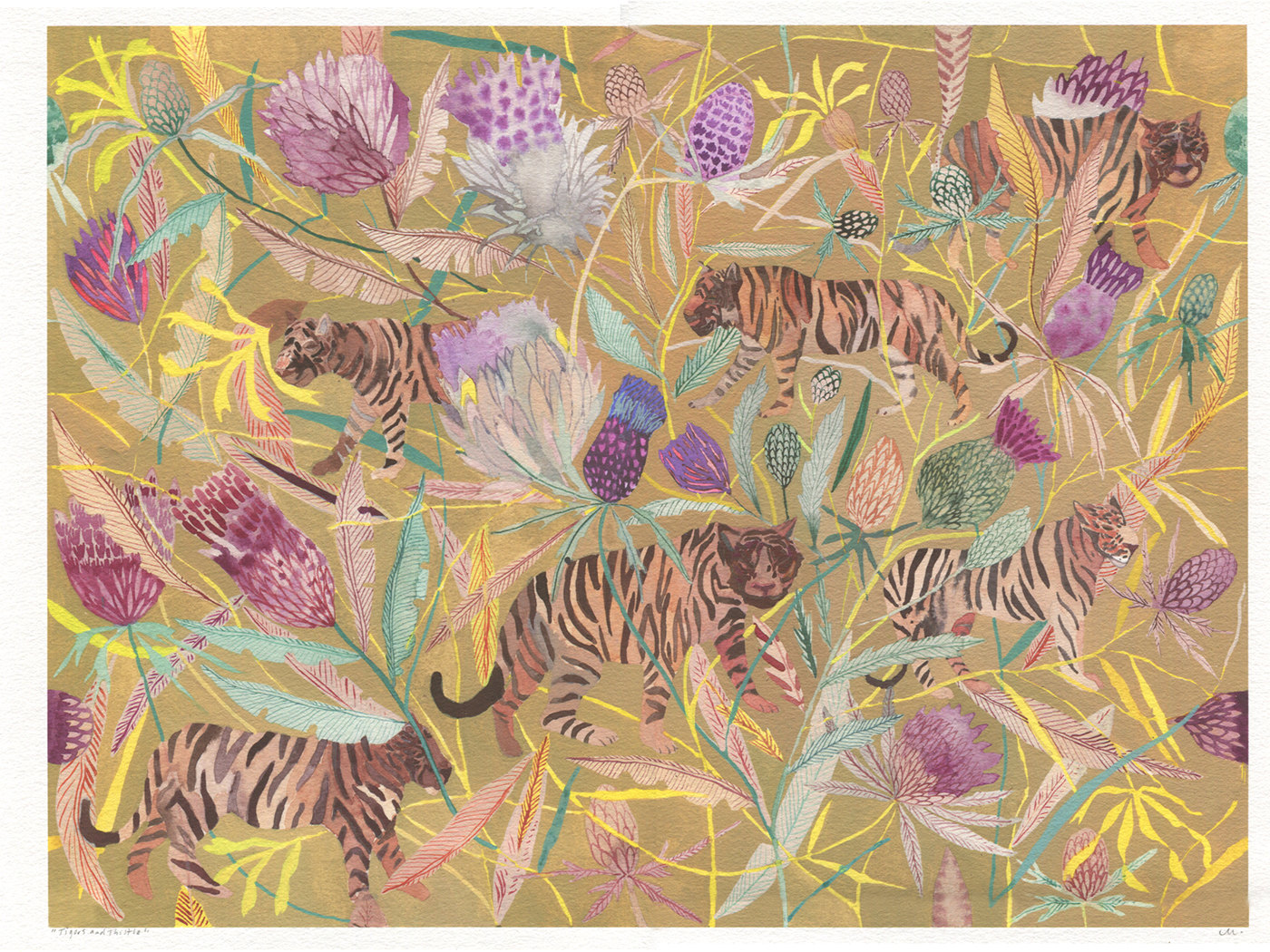 Tigers and Thistle by Michelle Morin