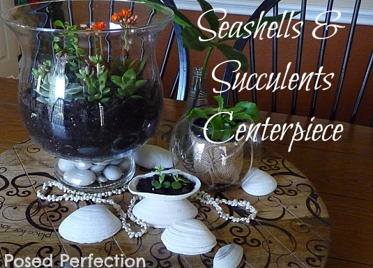 Seashells and Succulents Centerpiece
