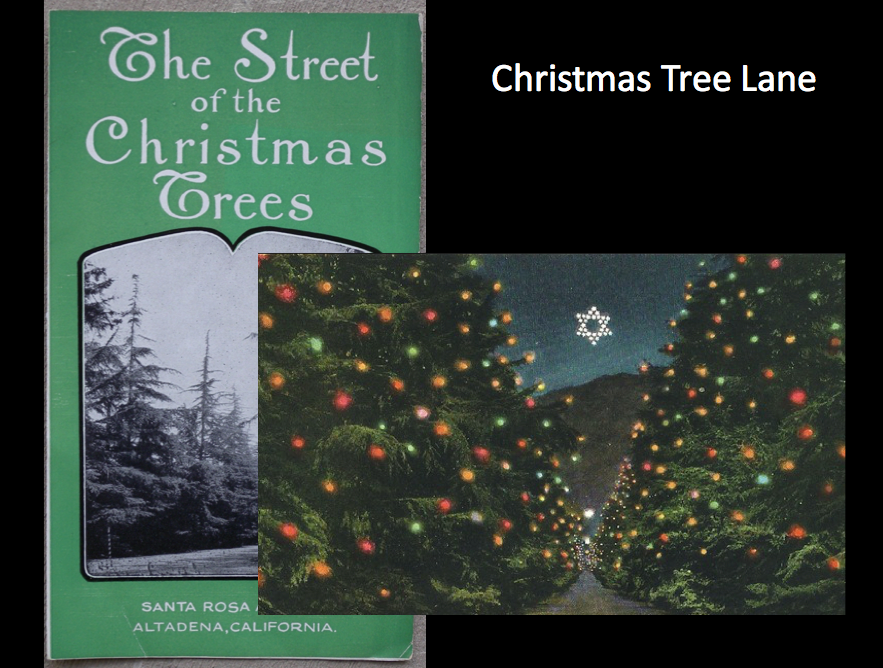 she said christmas tree lane was in pasadena the altadena chamber was quick to respond albeit light heartedly