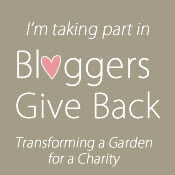 Bloggers Give Back