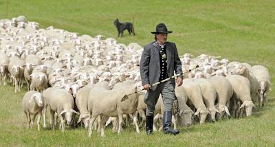 O pastor e suas ovelhas. O Senhor tem sido nosso pastor e nós temos sido suas ovelhas?