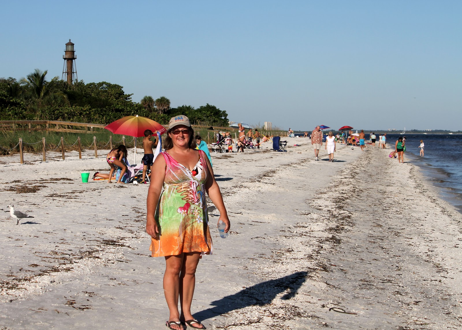 Dennis and holly never stay home sanibel island florida a lighthouse beach on a weekend in october nvjuhfo Gallery