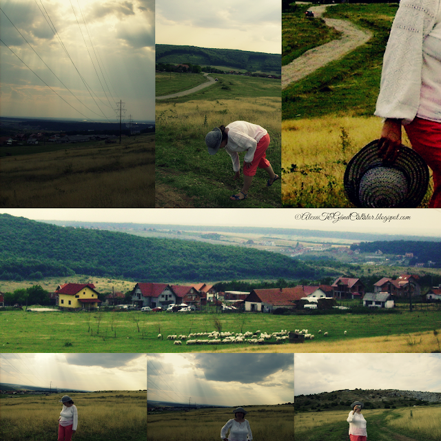 Instants from Zona Betfia/ Bihor County, summer 2014 Photo edited; ©AlexaT&GândCălător.blogspot.com