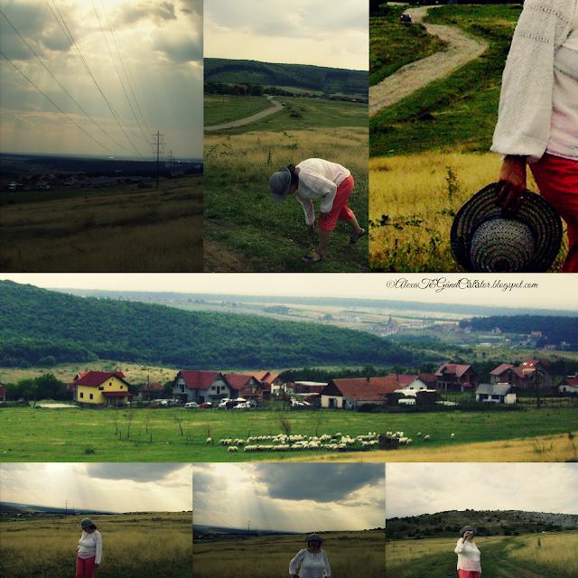 Instants from Zona Betfia/ Bihor County, summer 2014 Photo edited; ©AlexaT&GândCălător.blogspot.com