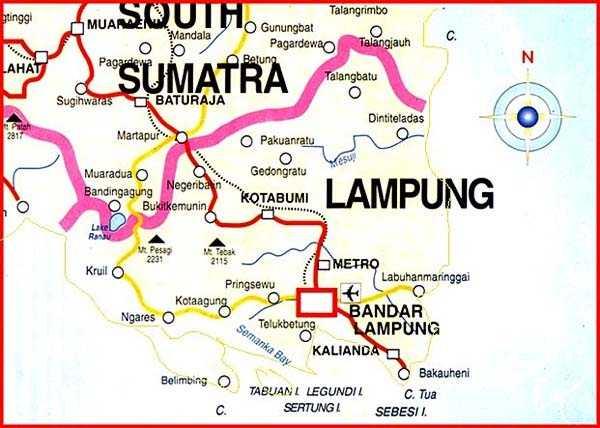 Di Lampung banyak banget orang Jawa.