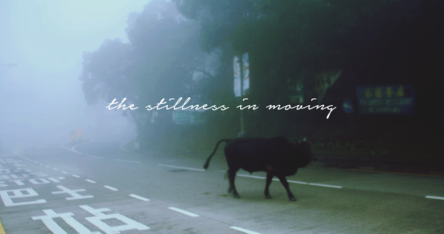 the stillness in moving