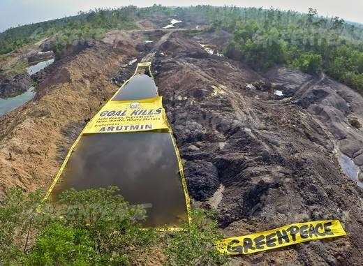 Greenpeace Ungkap Pertambangan Batubara Cemari Air di Kalimantan Selatan