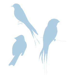 blue silhouette birds free download png transparent background