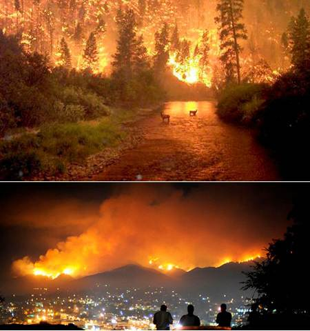 kebakaran-california