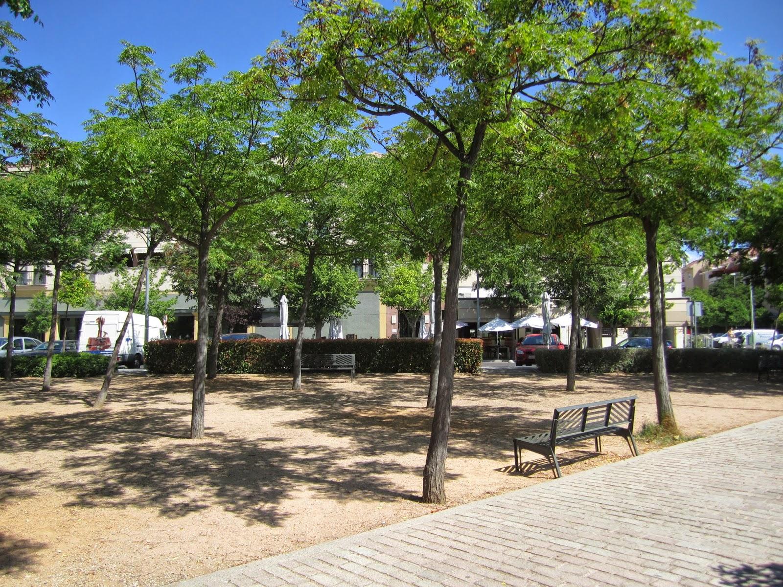 Zona arbolada con sombra, bancos y suelo de terrizo. En primer plano se ve la superficie adoquinada en desnivel con la zona de descanso.