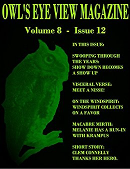 OWL'S EYE VIEW MAGAZINE - VOLUME 8 - ISSUE 12
