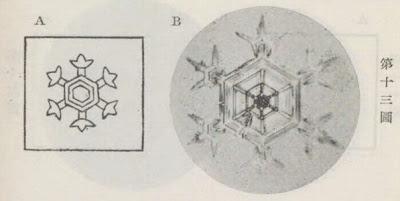 『雪華図説』の研究 模写図と顕微鏡写真と比較 第十三図