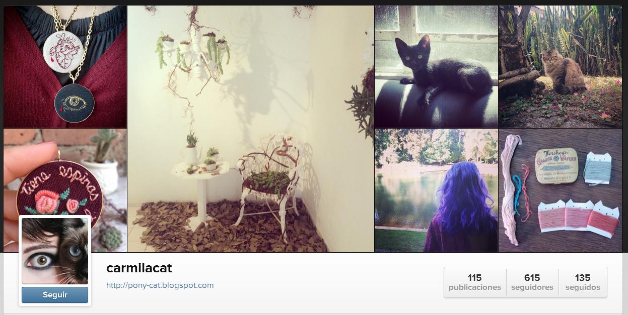 https://instagram.com/carmilacat/
