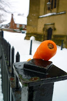 carrot on fence; photo by Val Phoenix