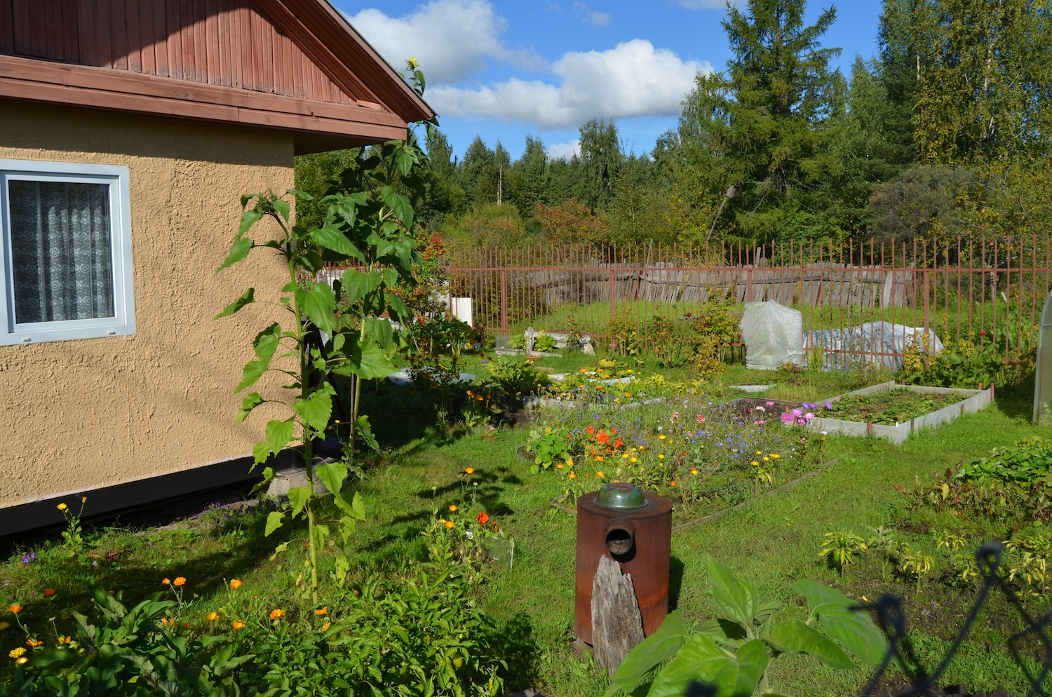 We bring to life ideas for the garden and dacha with our own hands