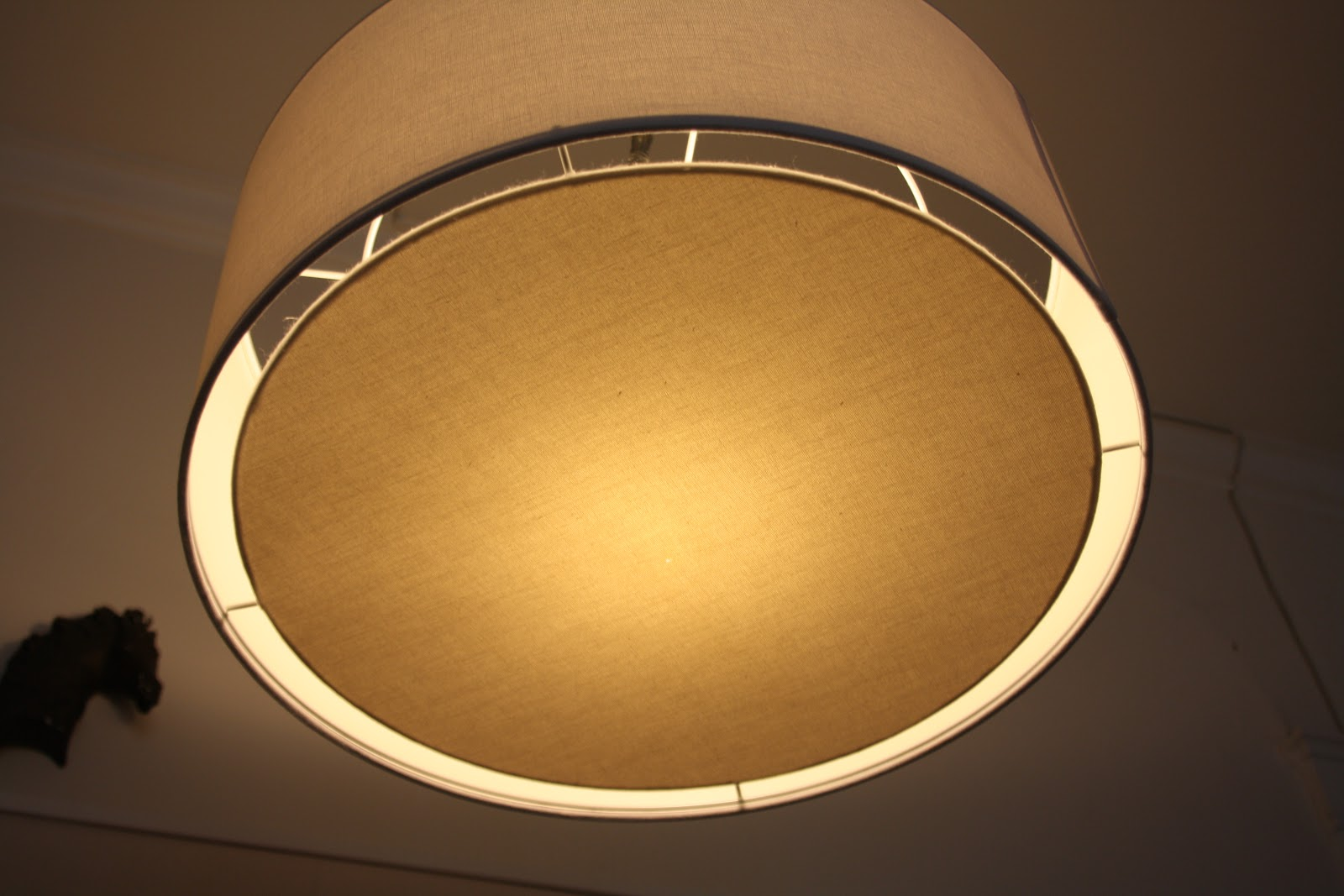 the diffuser on our cb2 pendant lamp