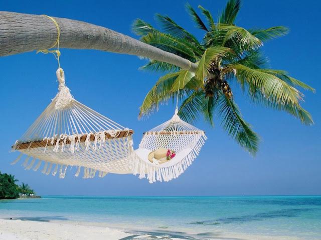 Когда и куда ехать отдыхать на пляже обзор пляжных мест | overview of beach beds