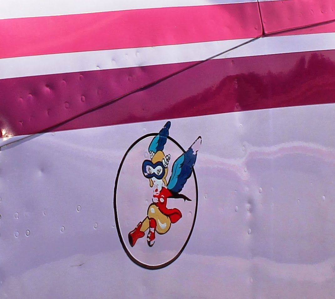 http://aeroexperience.blogspot.com/2014/03/in-pink-dazzling-cessna-425-conquest.html