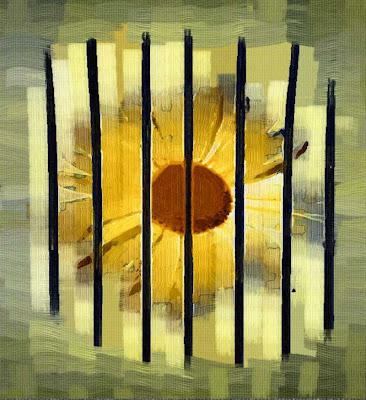 Natura presonera (Joana Roca)