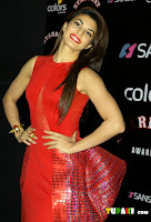 Celebs At Sansui Colors Stardust Awards 2014 1625.jpg