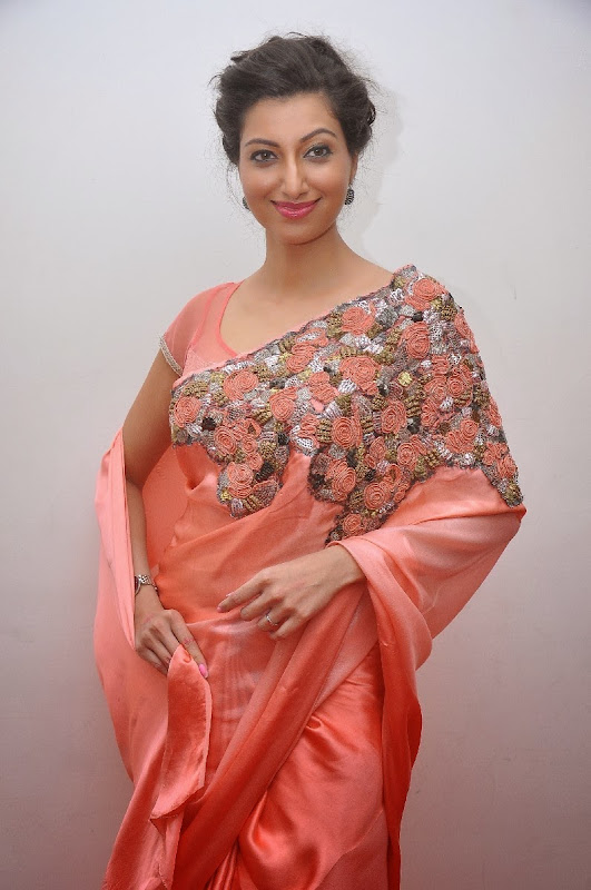 Actress Hamsa Nandini Saree Photos