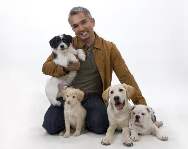 Chatter busy quot dog whisperer quot cesar millan reveals suicide attempt