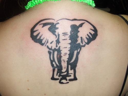 Elephant tattoo designsanimal tattooanimal tattoo for Elephant tattoos designs