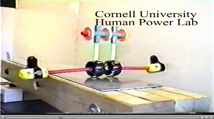 http://ruina.tam.cornell.edu/research/topics/locomotion_and_robotics/tinkertoy_walker/tinkertoy_walker.mpg