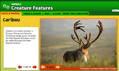 http://kids.nationalgeographic.com/kids/animals/creaturefeature/caribou/