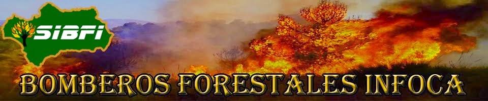 SIBFI (Sindicato Independiente de Bomberos Forestales INFOCA)