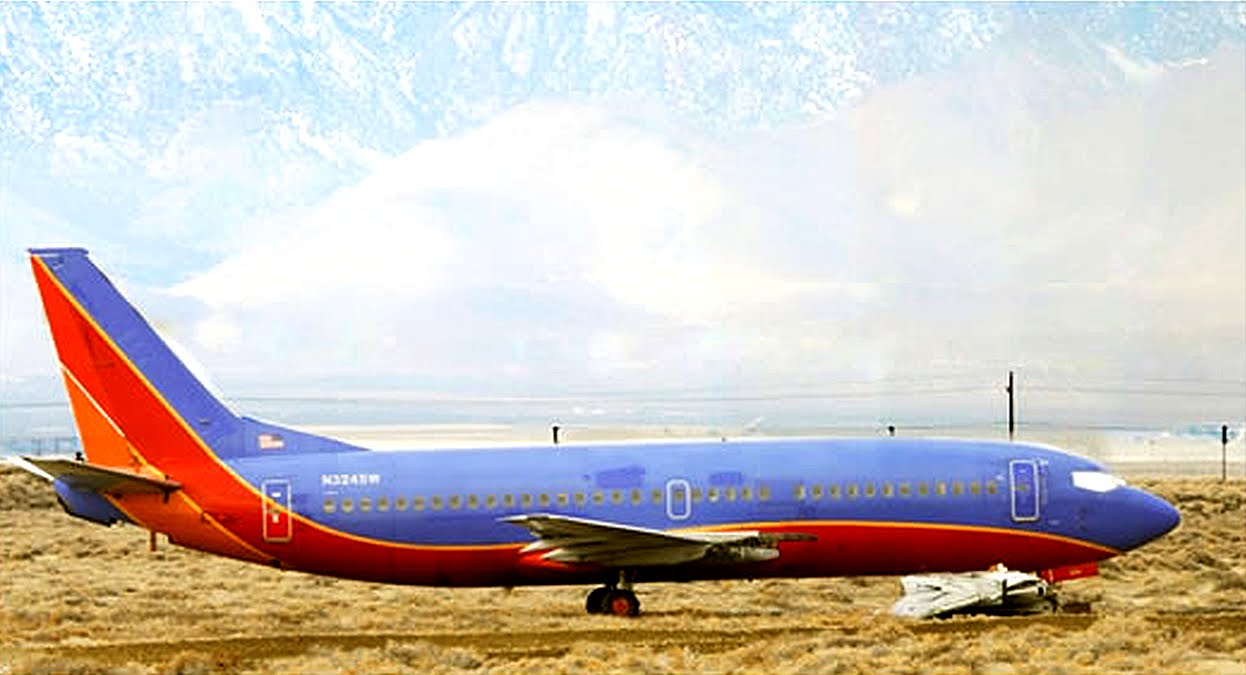 Of All Arts: Southwest Airlines Boeing 737