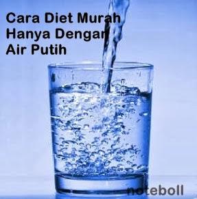 Cara Diet Murah Hanya Dengan Air Putih