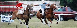 pato, deporte nacional argentino, deportes a caballo