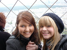 Top of the Eiffel Tower 2010