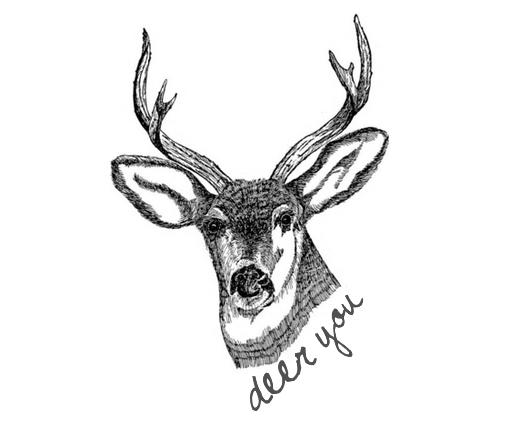 deer in the highlight