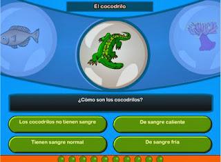 http://www.cyberkidzjuegos.com/cyberkidz/juego.php?spelUrl=library/wetenschap/groep7/wetenschap1/&spelNaam=Los%20mam%C3%ADferos&groep=7&vak=wetenschap