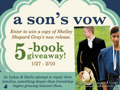 Litfuse's A Son's Vow by Shelley S. Gray 5 Book Giveaway thru 2/10